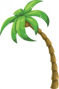 rsz_colorful-vector-palm-tree_zkwqqqlo_l